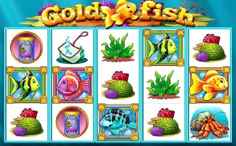 Gold Fish Screenshot