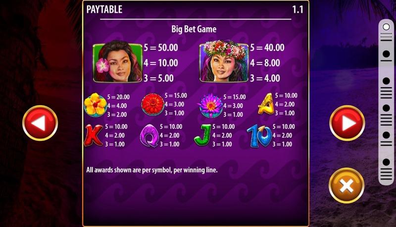 Hula Hula Nights Paytable