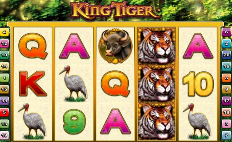 King Tiger Screenshot