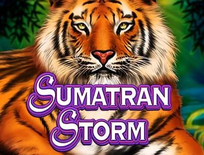 Sumatran Storm Logo