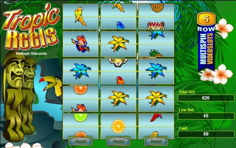 Tropical Reels Screenshot