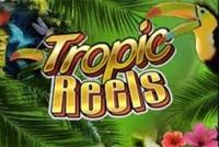 Tropic Reels Logo