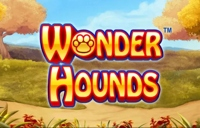 Wonder Hounds Logo