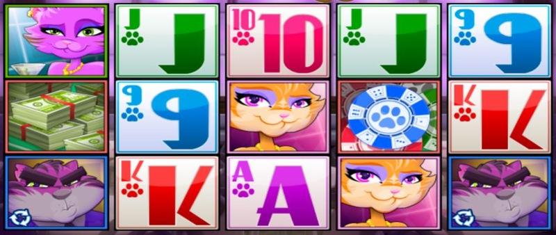 Catsino Screenshot