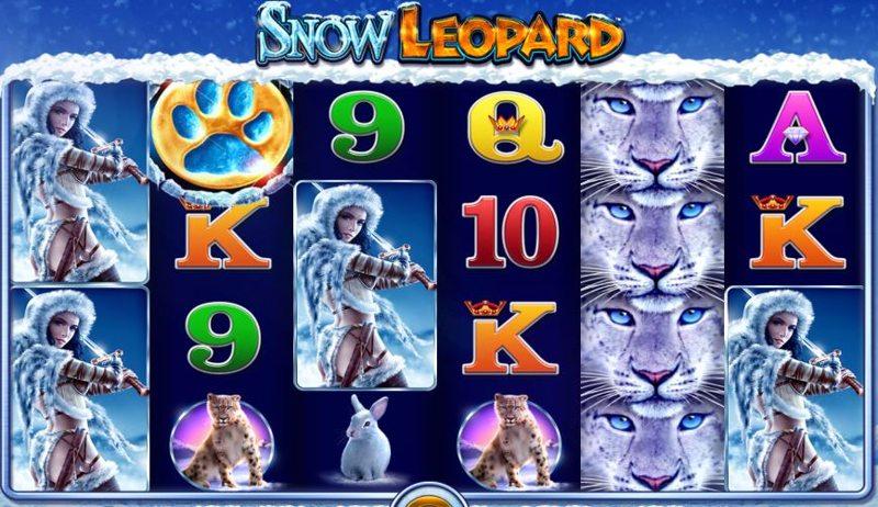 Snow Leopard Screenshot