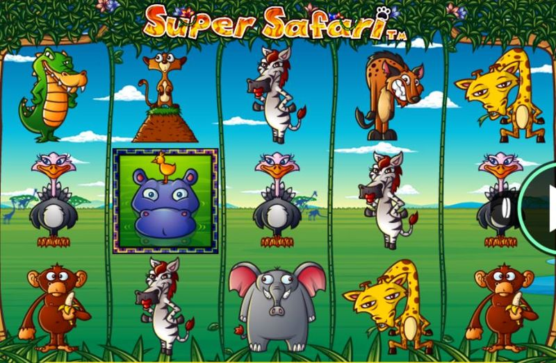 Super Safari Screenshot
