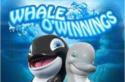 Whale O Winnings Logo