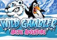 Wild Gambler Arctic Adventure Logo