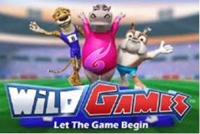 Wild Games Logo