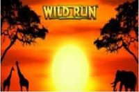 Wild Run Logo
