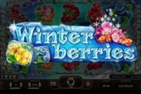 Winterberries Logo