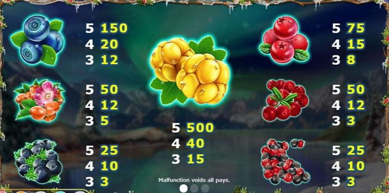 Winterberries Paytable